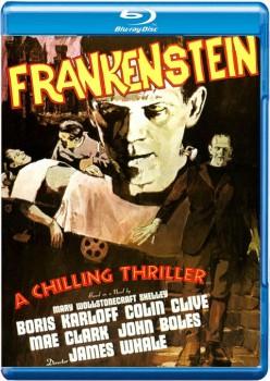 Frankenstein 1931 m720p BluRay x264-BiRD