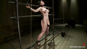 top bdsm rolle