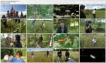 £owcy meteorytów / Meteorite Men (Season 3) (2011) PL.TVRip.XviD / Lektor PL