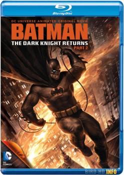 Batman: The Dark Knight Returns, Part 2 2013 m720p BluRay x264-BiRD