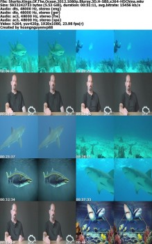 Sharks Kings Of The Ocean (2012) 1080p.Bluray.3D.H-SBS.x264-HDChina