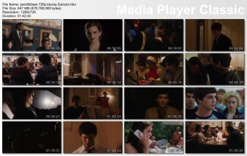 Download The Perks of Being a Wallflower (2012) BluRay 720p 650MB Ganool