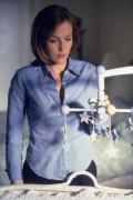 Cекретные материалы / The X-Files (сериал 1993-2016) 56c01e242488143