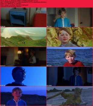 Blask tęczy / A Shine of Rainbows (2009) PL.DVDRip.XviD.AC3-sav / Lektor PL