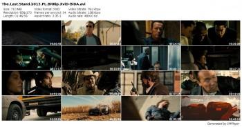 Likwidator / The Last Stand (2013)