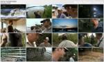 Atak afryka?skiego krokodyla / Africa's Croc Attack (2012) PL.HDTV.1080i / Lektor PL