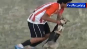 Pemain bola usir anjing