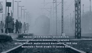 Ró¿yczka (2010) PL.DVDRip.XviD.AC3-inka / film polski + RMVB