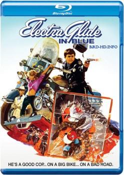 Electra Glide in Blue 1973 m720p BluRay x264-BiRD