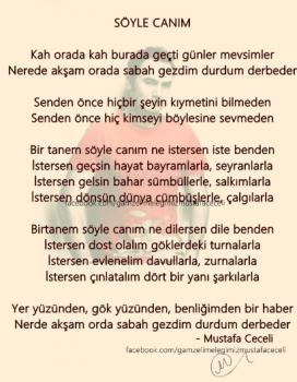 6a9556261289532 Mustafa Ceceli   Söyle Canım (2013) YepYeni Tek Parça