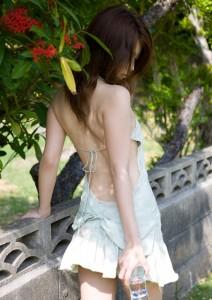 http://thumbnails103.imagebam.com/26197/29fe69261960879.jpg