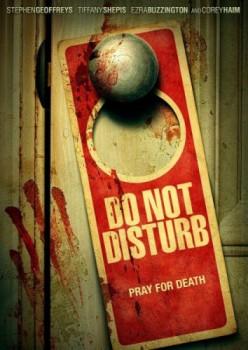 �� ���������� / Do Not Disturb (2013)