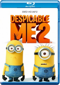 Despicable Me 2 2013 m720p BluRay x264-BiRD