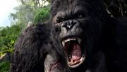 Кинг Конг / King Kong (Наоми Уоттс, Эдриен Броуди, Джэк Блэк, 2005) 1b210b294373712