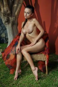 http://thumbnails103.imagebam.com/55004/7a84ab550039946.jpg