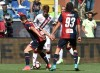 фотогалерея Genoa CFC SpA - Страница 3 4b8be3550552013