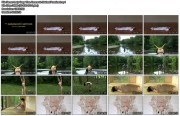 http://thumbnails103.imagebam.com/26945/abbc45269449783.jpg